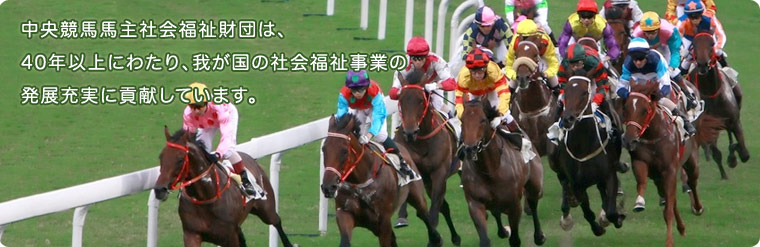 平成30年度中央競馬馬主社会福祉...